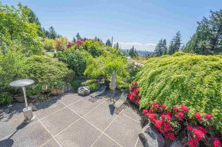 Photo 8: 1315 OTTAWA Avenue in West Vancouver: Ambleside House for sale : MLS®# R2579499