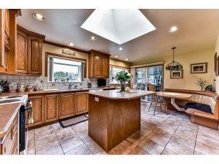 Photo 11: 8444 152 Street in Surrey: Fleetwood Tynehead House for sale : MLS®# R2041312