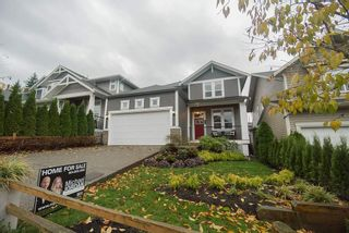 """Photo 1: 24406 112A Avenue in Maple Ridge: Cottonwood MR House for sale in """"MONTGOMERY ACRES"""" : MLS®# R2222162"""