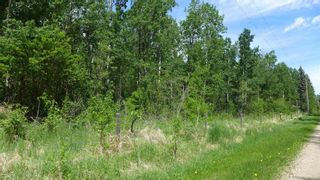 Photo 21: 54411 RR 40: Rural Lac Ste. Anne County Rural Land/Vacant Lot for sale : MLS®# E4239946