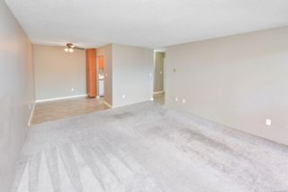 Photo 7: 306 2757 Quadra St in Victoria: Vi Hillside Condo for sale : MLS®# 886266