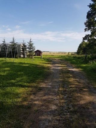 Photo 10: 303 Township: Rural Mountain View County Land for sale : MLS®# C4303606