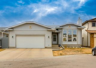 Main Photo: 44 Templeson Place NE in Calgary: Temple Detached for sale : MLS®# A1093149