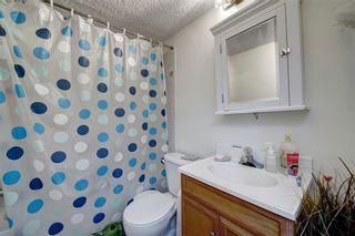 Photo 27: 14703 Deer Ridge Drive SE in Calgary: Deer Ridge Detached for sale : MLS®# A1126639