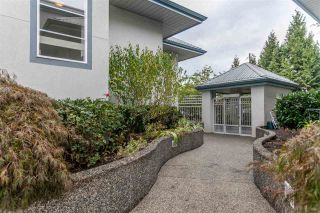 Photo 13: 305 11519 BURNETT STREET in Maple Ridge: East Central Condo for sale : MLS®# R2022198