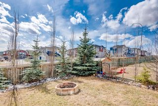 Photo 33: 104 Bow Ridge Drive: Cochrane Semi Detached for sale : MLS®# A1093041
