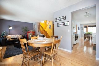 Photo 15: 309 Thibault Street in Winnipeg: St Boniface Residential for sale (2A)  : MLS®# 202008254