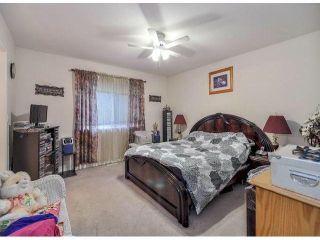Photo 14: 12062 201B ST in Maple Ridge: Northwest Maple Ridge House for sale : MLS®# V1040907