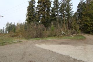 Photo 11: 1/4 2700 Block Squilax Anglemont Road in Lee Creek: North Shuswap Land Only for sale (Shuswap)  : MLS®# 10138544