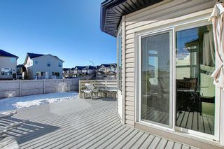 Photo 47: 119 PANTON Landing NW in Calgary: Panorama Hills Detached for sale : MLS®# A1062748