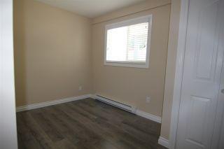 Photo 11: 20368 115 Avenue in Maple Ridge: Southwest Maple Ridge House for sale : MLS®# R2174452