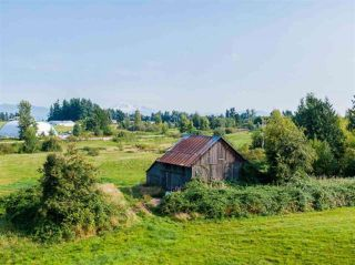 Photo 9: 5571 ROSS Road: Agri-Business for sale in Abbotsford: MLS®# C8036359