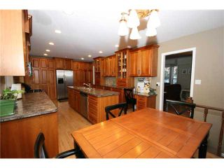 """Photo 5: 1447 55TH Street in Tsawwassen: Cliff Drive House for sale in """"CLIFF DRIVE"""" : MLS®# V942365"""