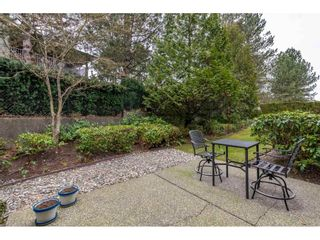 """Photo 29: 159 20391 96 Avenue in Langley: Walnut Grove Townhouse for sale in """"Chelsea Green"""" : MLS®# R2539668"""