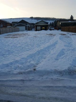 Main Photo: 328 Macleod Crescent: Turner Valley Residential Land for sale : MLS®# A1080140