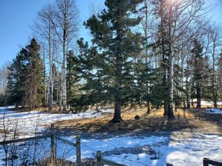Photo 15: 0 NW9-33-5W5: Sundre Commercial Land for sale : MLS®# A1082207
