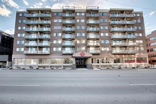 Photo 39: 302 429 14 Street NW in Calgary: Hillhurst Apartment for sale : MLS®# A1075167