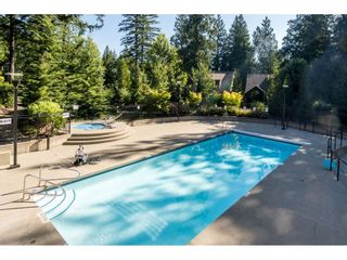 """Photo 34: 43573 RED HAWK Pass: Lindell Beach House for sale in """"The Cottages at Cultus Lake"""" (Cultus Lake)  : MLS®# R2477513"""