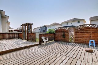Photo 45: 766 Coral Springs Boulevard NE in Calgary: Coral Springs Detached for sale : MLS®# A1136272