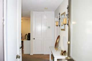 Photo 13: COLLEGE GROVE Condo for sale : 1 bedrooms : 4871 Collwood #B in San Diego