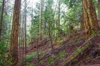 Photo 19: 2604 Yardarm Rd in : GI Pender Island Land for sale (Gulf Islands)  : MLS®# 863927