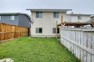 Photo 36: 156 Taradale Close NE in Calgary: Taradale Detached for sale : MLS®# A1115791