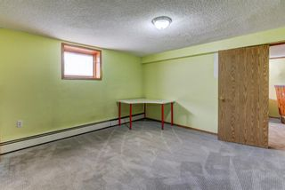 Photo 32: 4 Commerce Street NW in Calgary: Cambrian Heights Detached for sale : MLS®# A1127104