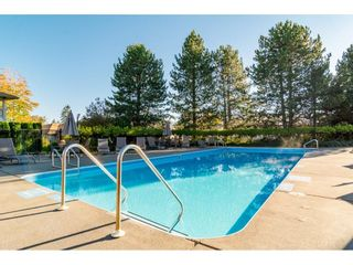 """Photo 34: 191 20391 96 Avenue in Langley: Walnut Grove Townhouse for sale in """"CHELSEA GREEN"""" : MLS®# R2621978"""