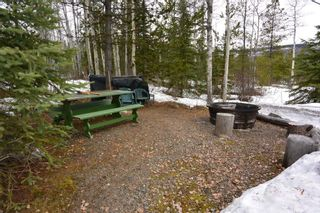 Photo 35: 2842 Ptarmigan Road | Private Paradise Smithers