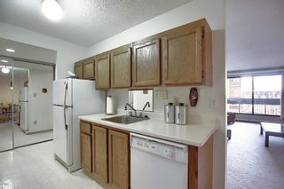 Photo 8: 505 9800 Horton Road SW in Calgary: Haysboro Apartment for sale : MLS®# A1060584