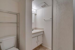 Photo 21: 6807 24 Avenue NE in Calgary: Pineridge Detached for sale : MLS®# C4258740
