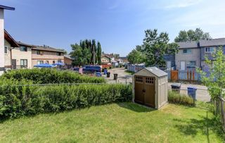 Photo 23: 181 Templemont Drive NE in Calgary: Temple Semi Detached for sale : MLS®# A1122354