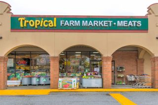 Photo 1: 11190 84 Avenue in Delta: Scottsdale Business for sale (N. Delta)  : MLS®# C8028267