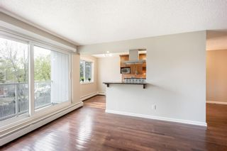 Photo 6: 202 4455C Greenview Drive NE in Calgary: Greenview Apartment for sale : MLS®# A1110677
