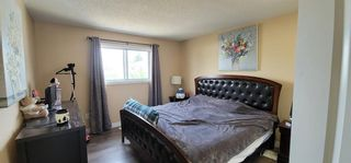 Photo 29: 766 ERINWOODS Drive in Calgary: Erin Woods Detached for sale : MLS®# A1128460