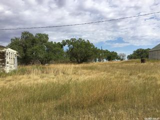 Photo 6: Wilkinson Land in Perdue: Lot/Land for sale : MLS®# SK824065