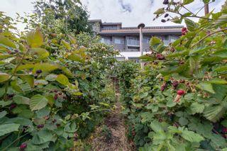 Photo 49: 1151 Pandora Ave in : Vi Fernwood House for sale (Victoria)  : MLS®# 886927