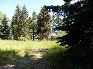 Photo 6: 112152 266 Avenue W: Rural Foothills County Residential Land for sale : MLS®# A1065931