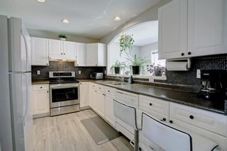Photo 16: 67 Tarington Place NE in Calgary: Taradale Detached for sale : MLS®# A1146117