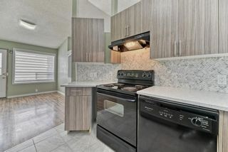 Photo 11: 262 Martinwood Place NE in Calgary: Martindale Detached for sale : MLS®# A1123392