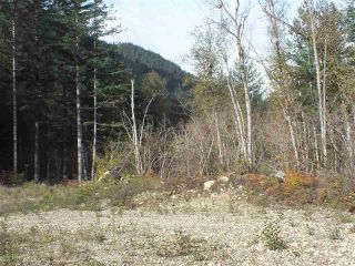 Photo 9: 65457 NORTON Road in Hope: Hope Center Land for sale : MLS®# R2545693
