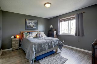 Photo 18: 50 Martha's Place NE in Calgary: Martindale Detached for sale : MLS®# A1119083