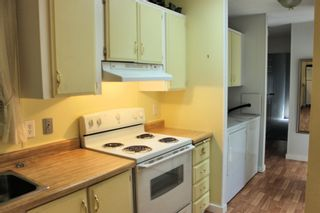 """Photo 7: 5 21163 LOUGHEED Highway in Maple Ridge: Southwest Maple Ridge Manufactured Home for sale in """"VAL MARIA MOBILE HOME PARK"""" : MLS®# R2598926"""