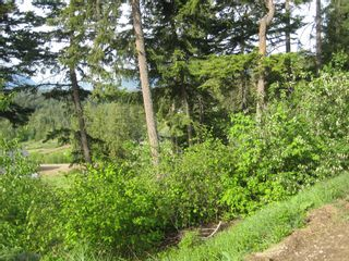 Photo 2: 12 2481 Squilax Anglemont Road in Lee Creek: Land Only for sale : MLS®# 10065844
