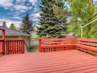 Photo 31: 5135 48 Street NW in Calgary: Varsity Detached for sale : MLS®# A1152810