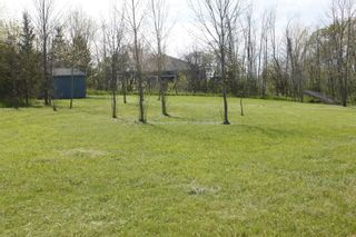 Photo 7: Pt Lot County Rd 15 in Prince Edward County: Sophiasburgh Property for sale : MLS®# X5225157