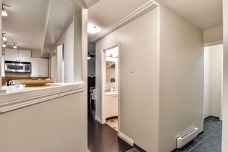 Photo 3: 53 19034 MCMYN ROAD in Pitt Meadows: Mid Meadows Townhouse for sale : MLS®# R2302301