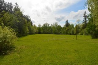 Photo 9: 3823 Highway 307 in Wallace: 102N-North Of Hwy 104 Residential for sale (Northern Region)  : MLS®# 202115509