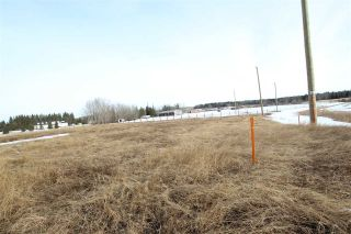 Photo 4: 8 53319 RGE RD 275: Rural Parkland County Rural Land/Vacant Lot for sale : MLS®# E4233742