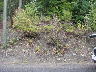 Photo 5: 13 Vickers Trail in Anglemont: Land Only for sale : MLS®# 10055804